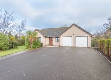 Thumbnail 3 bed bungalow for sale in 10 Myreside Drive, Inverkeilor, Arbroath
