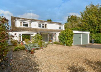Thumbnail 4 bedroom bungalow for sale in Denewood Road, West Moors, Ferndown, Dorset