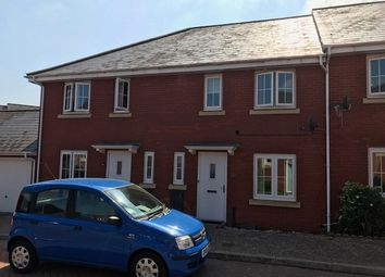 Thumbnail 3 bed terraced house to rent in Walsingham Place, Exeter