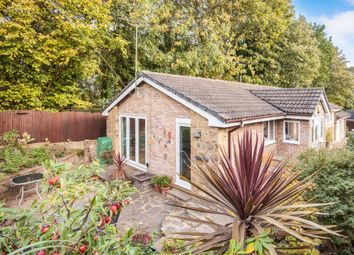 Thumbnail Detached bungalow for sale in Holly Bank, Ackworth, Pontefract