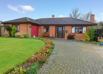 Thumbnail 3 bed detached bungalow for sale in School Corner, Cratfield, Halesworth, Suffolk