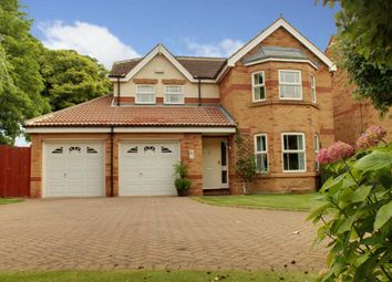 Thumbnail 4 bed detached house for sale in Sage Close, Beverley
