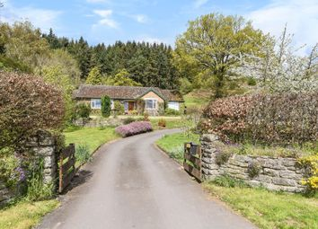 Thumbnail 3 bed detached bungalow for sale in Hay On Wye 3 Miles, Clyro 1 Mile