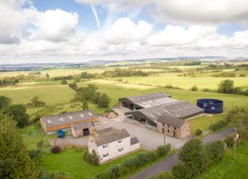 Thumbnail Farm for sale in Thorny Knowe, Longtown