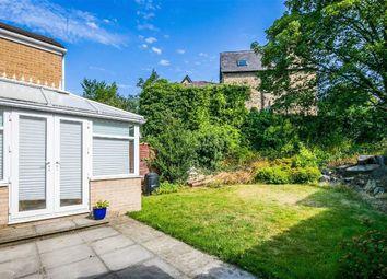 11, Endcliffe Terrace Road, Endcliffe S11
