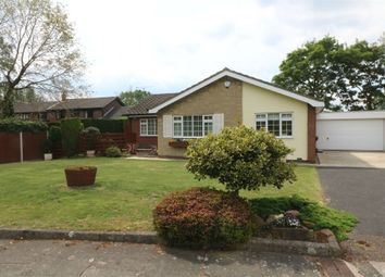 Thumbnail 3 bedroom detached bungalow for sale in The Hollows, Bessacarr, Doncaster, South Yorkshire
