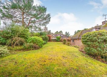 Thumbnail 4 bed bungalow for sale in Woodpecker Lane, Storrington, Pulborough, West Sussex