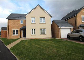 Thumbnail 4 bed detached house to rent in Rushyford Drive, Chilton, Ferryhill