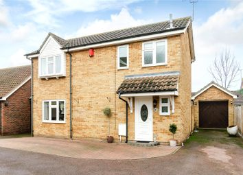 Thumbnail 3 bed detached house for sale in Purleigh Close, Burnt Mills, Essex