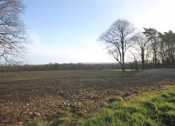 Land for sale in Fochabers IV32