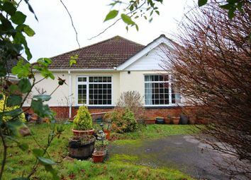 Thumbnail 2 bed bungalow for sale in Manor Road, New Milton