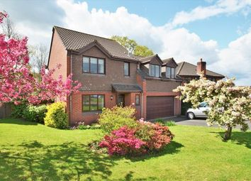 Thumbnail 4 bed detached house for sale in Tidcombe Close, Tiverton
