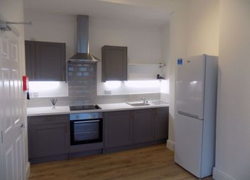 Thumbnail 2 bed flat to rent in Constitution Hill, Swansea