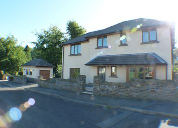 Thumbnail 3 bed detached house to rent in Bude Haven Terrace, Swansea