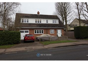 Thumbnail 4 bed detached house to rent in The Street, Black Notley