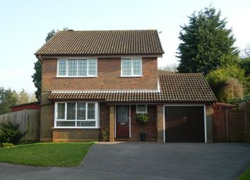 Thumbnail 4 bed property to rent in Whytings, Mannings Heath, Horsham