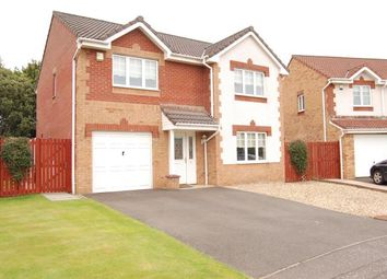Thumbnail 4 bedroom detached house to rent in Allan Grove, Bellshill