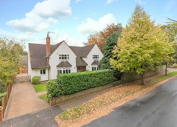 Thumbnail 5 bed detached house for sale in The Avenue, Hertford