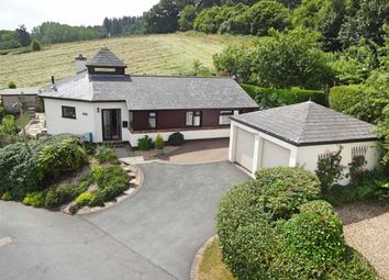 Thumbnail 4 bed detached bungalow for sale in Belfry, 1, Uchel Dre, Kerry, Newtown, Powys