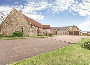 Thumbnail 5 bed detached bungalow for sale in Queens View, Wester Balgedie, Kinross