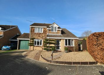 Thumbnail 4 bed detached house for sale in Hawthorn Road, Horndean, Waterlooville