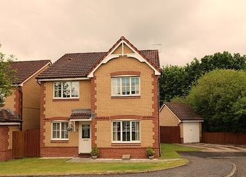 Thumbnail 4 bed detached house for sale in School View, Polmont