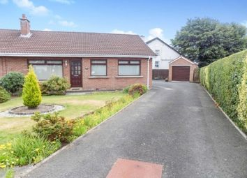 Thumbnail 3 bed semi-detached bungalow to rent in Orange Hall Lane, Lisburn