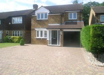 Thumbnail 4 bed detached house to rent in Bridle Way, Great Amwell, Ware