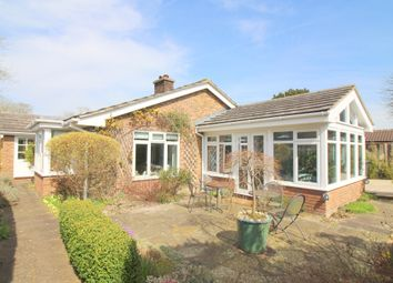 Thumbnail 3 bed detached bungalow for sale in The George Yard, Broad Street, Alresford