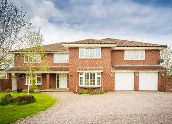 Thumbnail 5 bed detached house for sale in The Paddocks, Ripley
