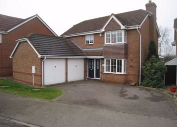 Thumbnail 4 bed detached house to rent in Speedwell Drive, Broughton Astley, Leicester