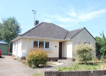 Thumbnail 2 bedroom bungalow to rent in Swayne Road, Wilton, Salisbury
