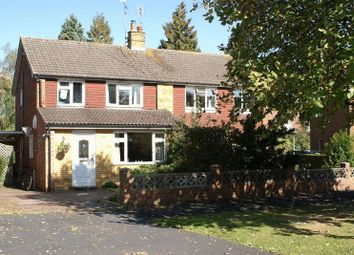 Thumbnail 3 bed semi-detached house to rent in Bolle Road, Alton