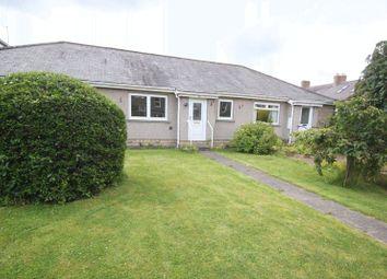 Thumbnail 2 bed bungalow to rent in Windsor Terrace, Corbridge