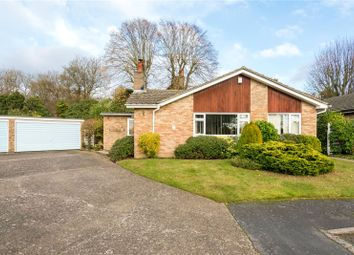 Thumbnail 3 bed detached bungalow for sale in Birchfield Grove, Epsom, Surrey