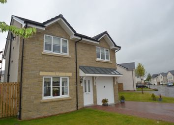 Thumbnail 4 bed detached house to rent in Meiklejohn Street, Stirling