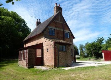 Thumbnail 3 bed detached house to rent in Witchampton, Wimborne, Dorset