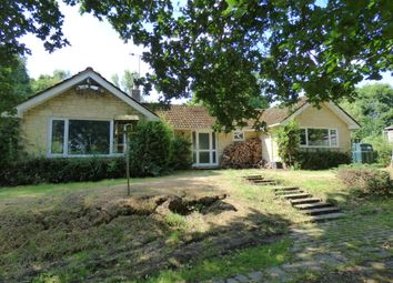 Thumbnail 4 bed detached bungalow for sale in Hunger Hill, East Stour
