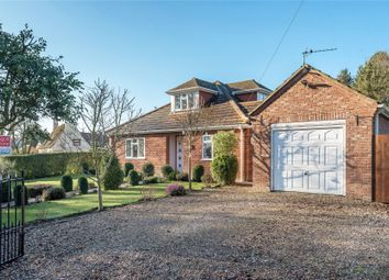 Thumbnail 4 bed bungalow for sale in School Lane, Bicker