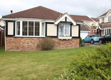 Thumbnail 3 bed bungalow to rent in Harebell Close, Killinghall, Harrogate