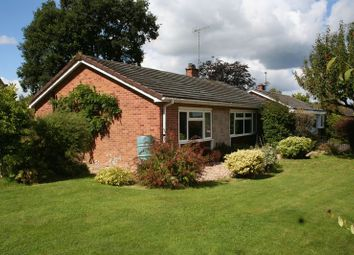 Thumbnail 3 bed detached bungalow to rent in St. Lawrence Close, Tiverton