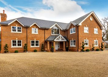 Thumbnail 6 bedroom equestrian property for sale in Chobham, Woking, Surrey