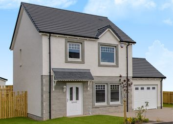 Thumbnail 3 bedroom detached house for sale in Lyall Way, Laurencekirk