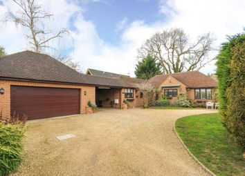 Thumbnail 3 bedroom detached bungalow for sale in Windlesham, Surrey