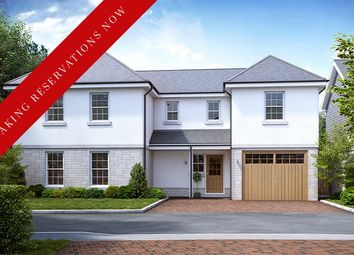 Thumbnail 4 bedroom detached house for sale in The Elizabeth, Mayhew Gardens, Plympton