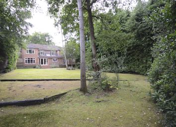 Thumbnail 5 bed detached house to rent in Llanvair Close, Ascot