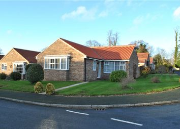 Thumbnail 3 bed detached bungalow for sale in Glebe Meadow, Sharow, Ripon, North Yorkshire