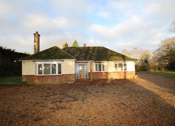 Thumbnail Detached bungalow to rent in Stow Bedon Road, Caston, Attleborough