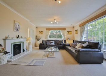Thumbnail 5 bed detached bungalow for sale in Mill Lane, Great Harwood, Blackburn