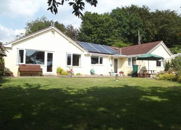 Thumbnail 4 bed detached bungalow for sale in Green Hollow, Harcombe Road, Raymonds Hill, Axminster, Devon